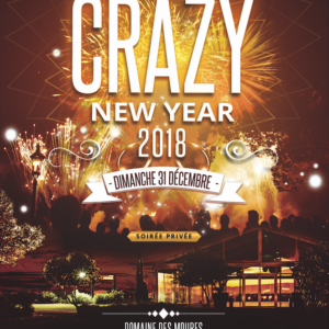 reveillon montpellier crazy new year